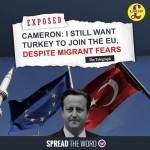 cameron-supports-turkey-in-eu