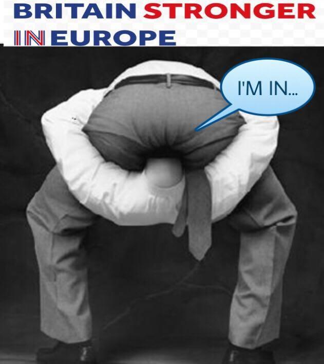 head-in-ass-brexit - negative campaign in UK