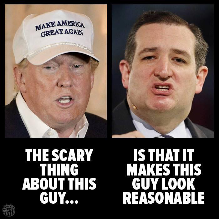 Ted cruz meme and trump satire